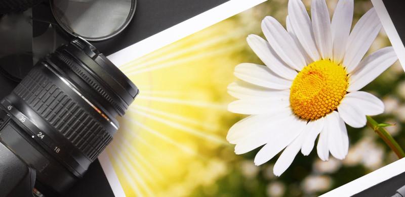 usługi druku fotografii w trybie ekspresowym
